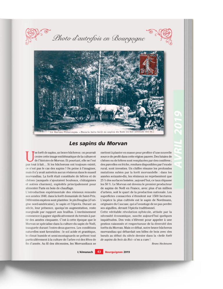 Almanach Bourguignon - Photo d'autrefois en Bourgogne - Les Sapins du Morvan