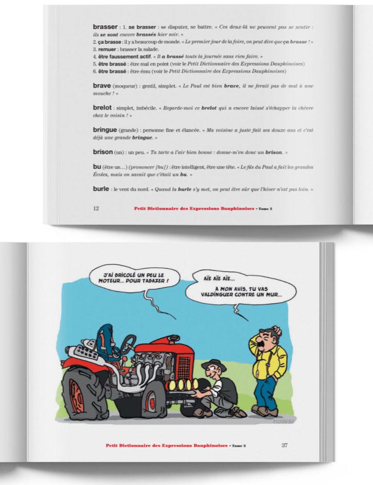 Petit Dictionnaire des Expressions Dauphinoises – Livre expression du Dauphiné