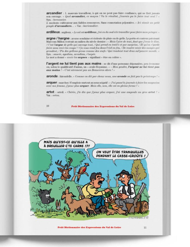 Petit Dictionnaire des Expressions du Val de Loire – Livre expression région