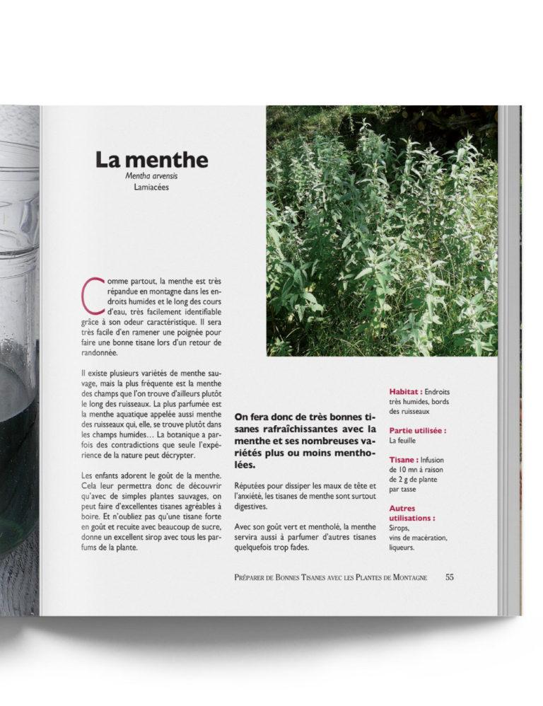 Livre Préparer Bonnes Tisanes à la menthe Plantes de Montagne – Gilles Hiobergary