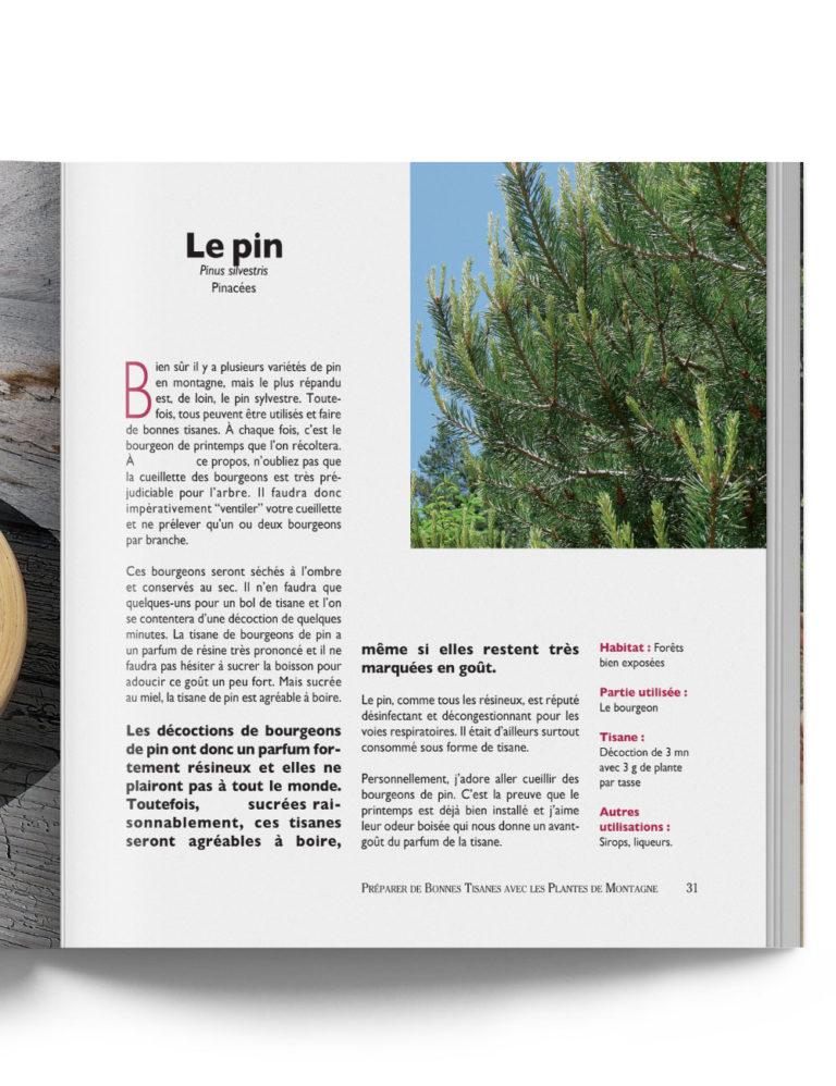 Livre Préparer Bonnes Tisanes au Pin Plantes de Montagne – Gilles Hiobergary